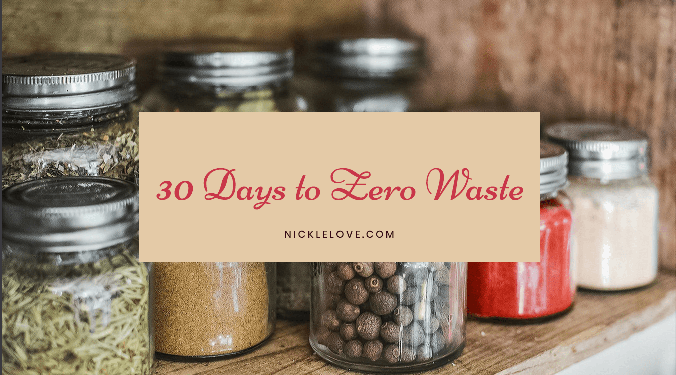 30 Days to Zero Waste Challenge